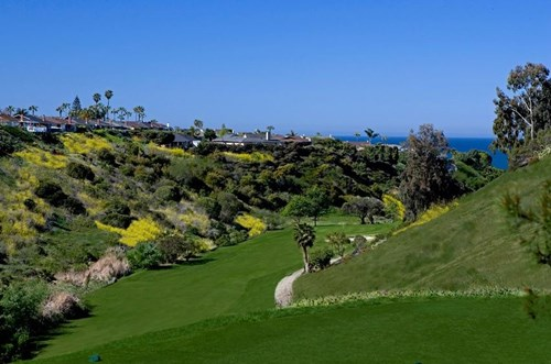 Image Result For Golf Courses Near San Clemente Ca