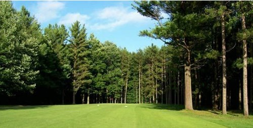Find Newaygo Michigan Golf Courses For Golf Outings